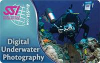 Unterwasser-Fotographie