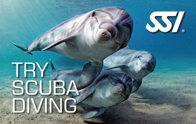 SSI Brevet Try Scuba Diving